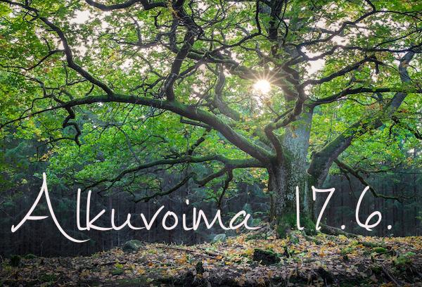 ALKUVOIMA-miniretriitti 17.6.2017 Yli-Iin Luonto-Olohuoneessa